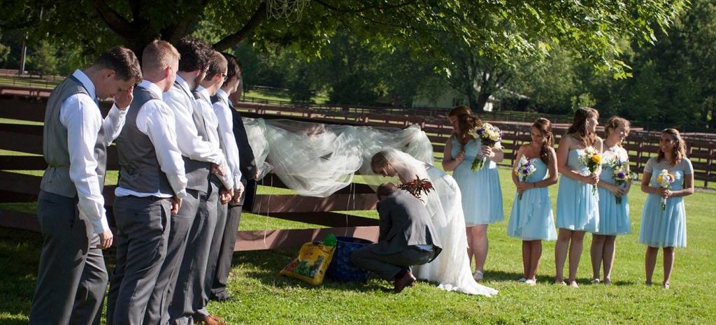 wedding ceremony tree planting
