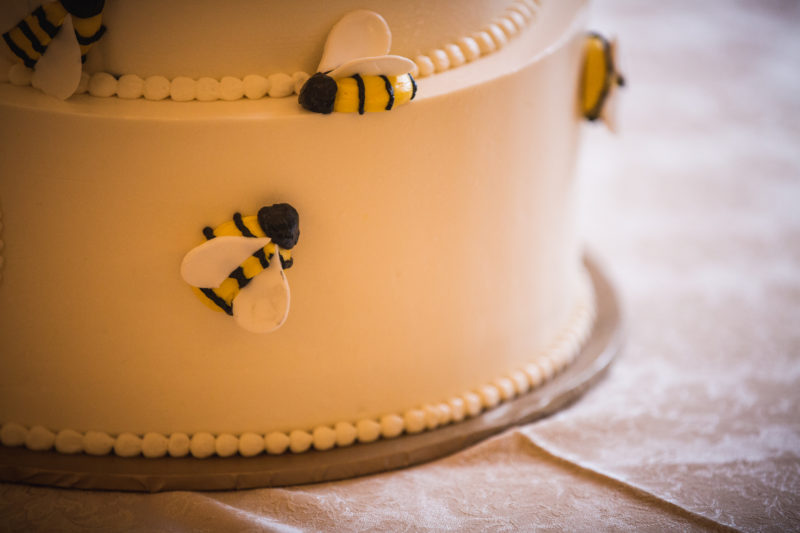 Charlotte Wedding- Honeybee Cake